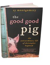 good-good-pig