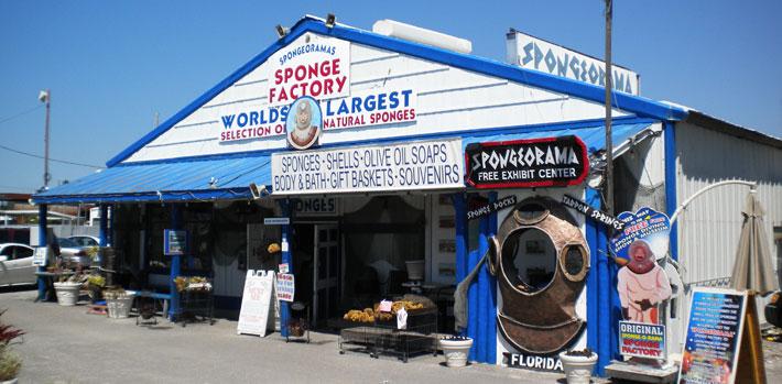 spongeorama.jpg